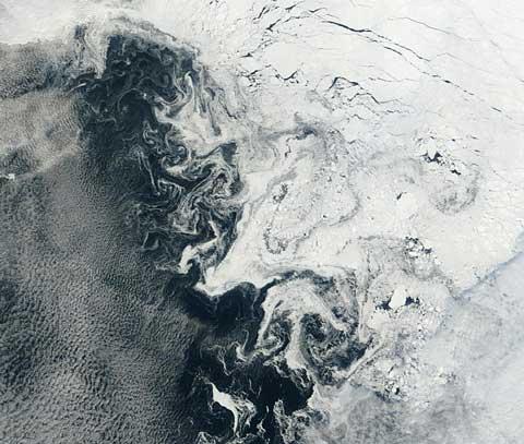 Arctic090917Terra.jpg
